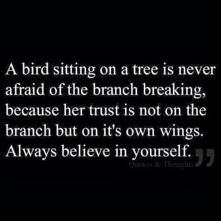 Trust Yourself Hope Of A Butterfly